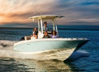 2022 Boston Whaler 270 Dauntless