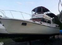1981 Carver 3607 Aft Cabin Motoryacht