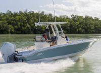 2022 Boston Whaler 250 Dauntless