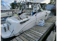 2008 Sea Ray 290 Amberjack