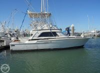 1989 Bertram 37 Sport Fisherman