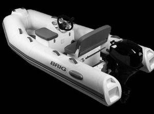 2021 Brig F300