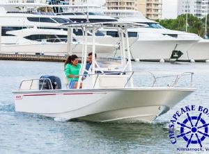 2022 Boston Whaler 190 Montauk