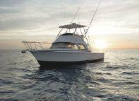 2021 Bertram 35 sport fisherman
