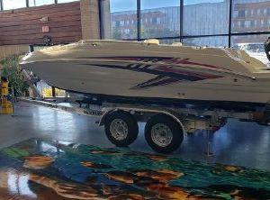 2021 Stingray 201DS