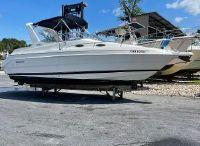 1999 Wellcraft 2600 Martinique