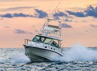 2022 Boston Whaler 345 Conquest
