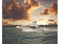 2022 Boston Whaler 380OR