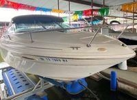 1998 Sea Ray 215 Express Cruiser