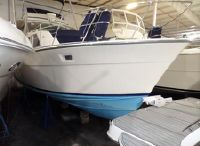 1976 Bertram 42 Motor Yacht