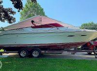 1989 Sea Ray 260 Cuddy Cabin
