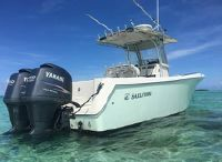 2010 Sailfish 266 CC