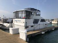 1989 Carver 42 Motor Yacht