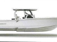 2021 Blackfin 332 CC