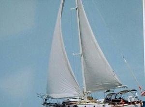 1977 Rafiki 37