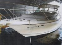 1995 Wellcraft 3300 COASTAL