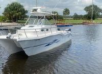 2010 Baha Cruisers 296 King Cat