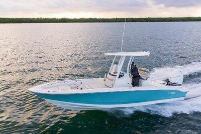 2021 Boston Whaler 250 Dauntless