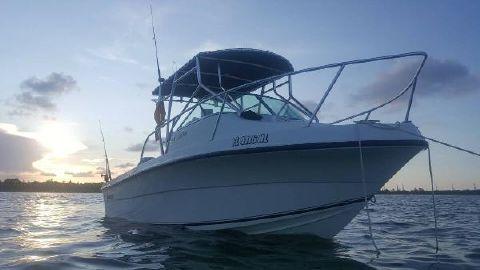 2007 Angler Boats 204 Walkaround