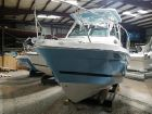 2019 STRIPER 230 Walkaround OB image