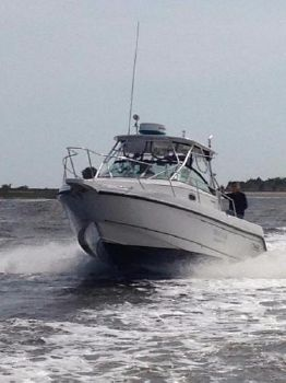 2002 Boston Whaler 275 Conquest