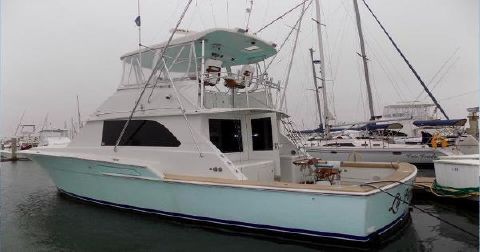 1979 Bertram 46 Flybridge