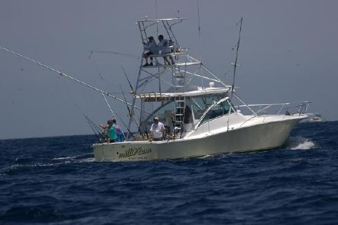 2002 Luhrs Open Fish