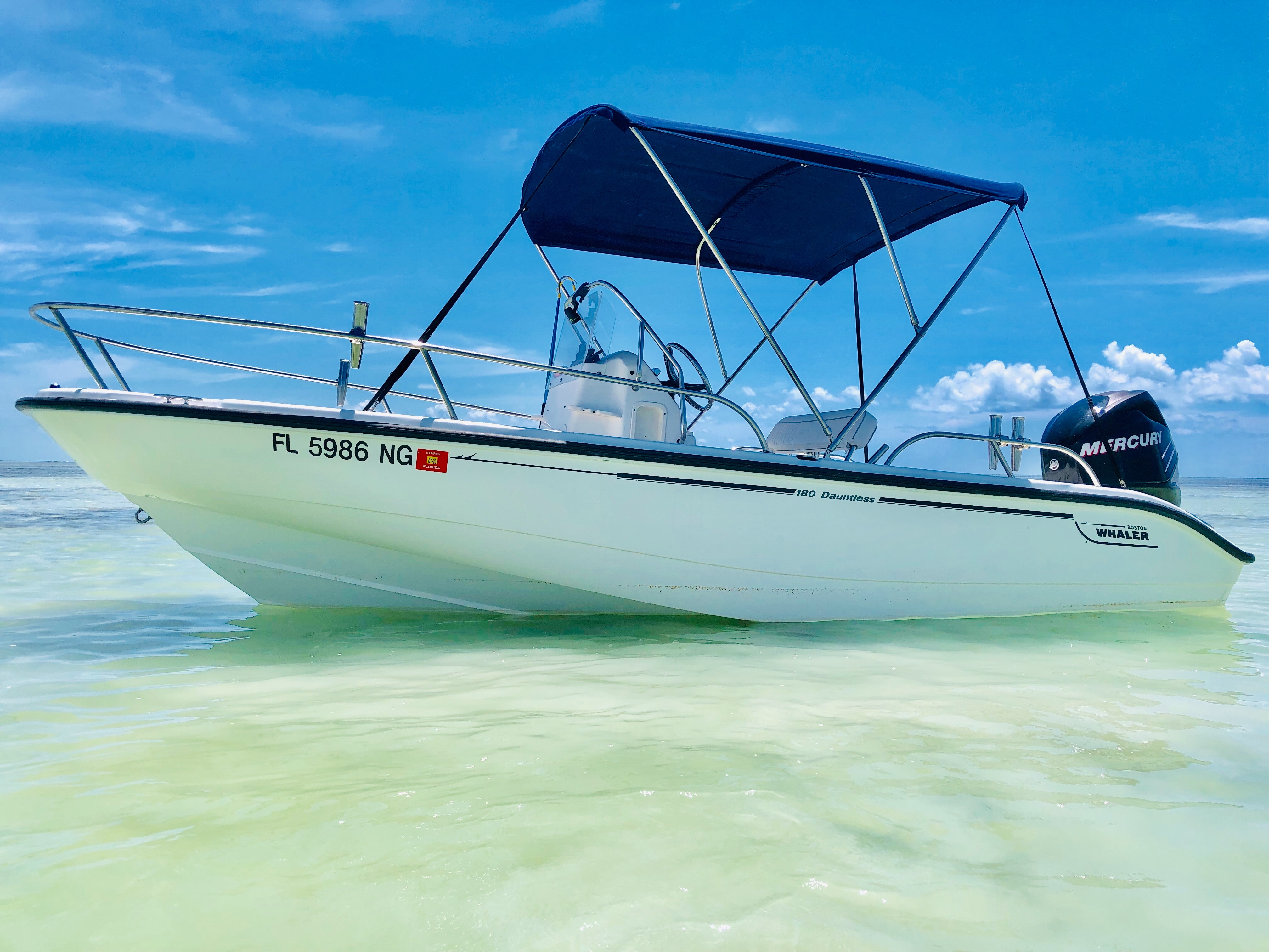 Check out this 2006 Boston Whaler Dauntless 18 on Boattrader com