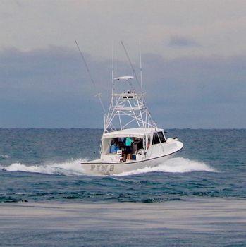 1998 Crusader Boats Sport Fish