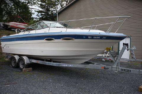 1988 Sea Ray Sea Ray 250