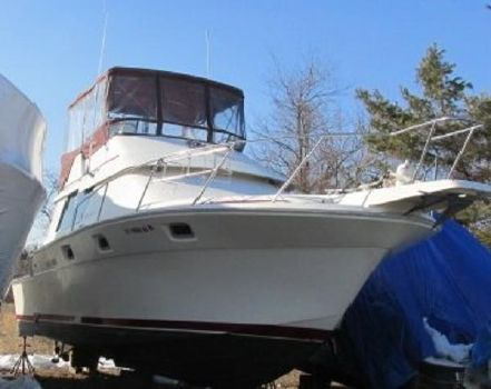 1986 Luhrs 342 Tournament