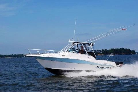 2006 Sea Quest 3000 Sport Fish Running