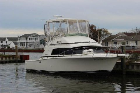 1989 Bertram 33II Sport Fisherman Profile