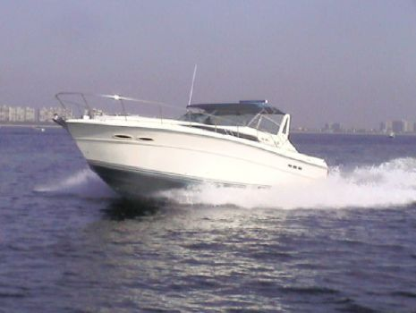 1987 Sea Ray Sundancer Photo 1