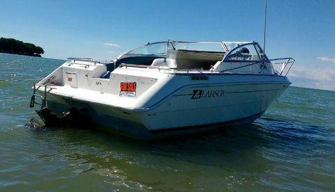1986 Larson Boats