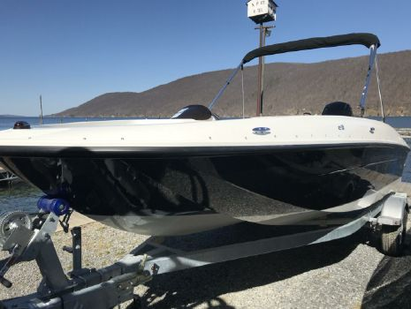 2018 BAYLINER Element E18