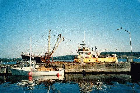 1994 Custom Trawler