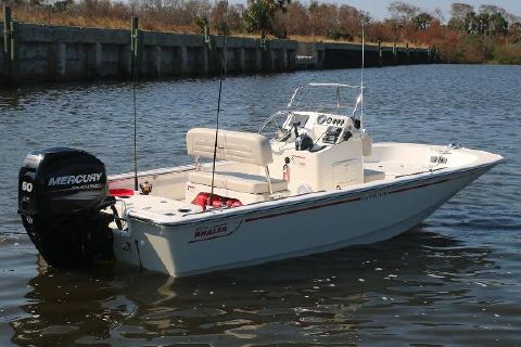 2018 Boston Whaler 150 Montauk Manufacturer Provided Image