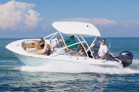 2019 SEA FOX 226 Traveler