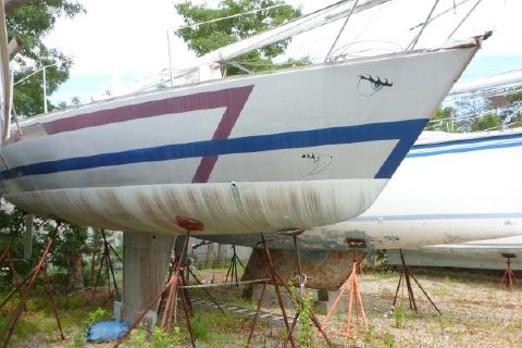 1981 Pearson Flyer-  project boat