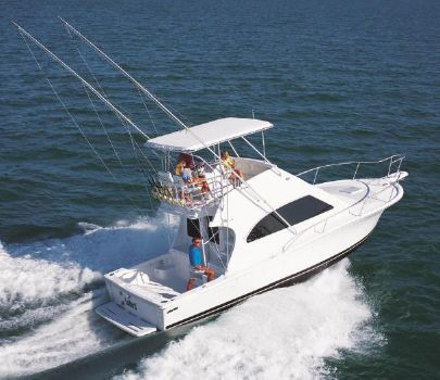 2001 Luhrs 34 Convertible Manufacturer Provided Image