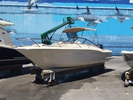 2016 Scout Boat Company 225 Dorado