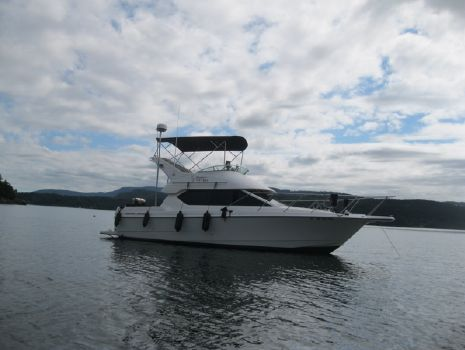 2005 Bayliner 288 Command Bridge