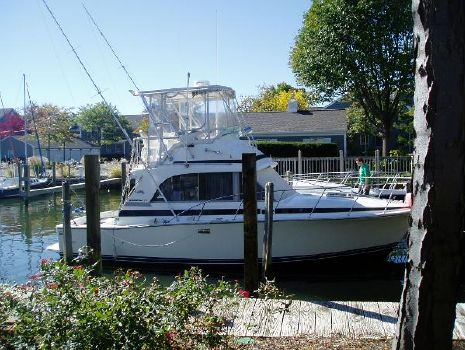 1985 Bertram 33 Flybridge Cruiser Starboard
