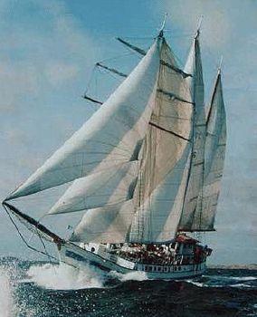 1951 Custom cargo schooner