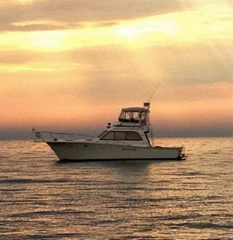 1984 Egg Harbor Convertible Sportfish Sun Rise and Cruising