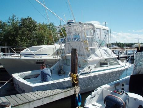 1975 Bertram 28 Flybridge CRUISER Photo 1