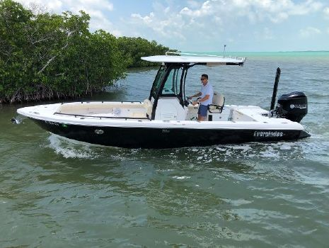 2017 EVERGLADES BOATS 253