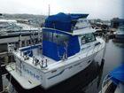 1993 Baha Cruisers 313 Fisherman