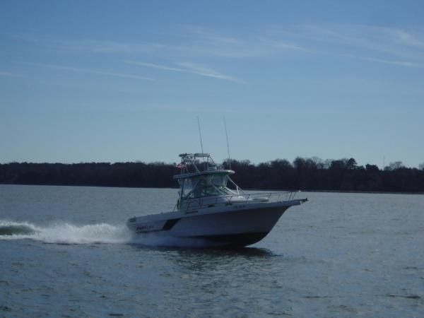 Pro line new and used boats for sale in virginia for Virginia saltwater fishing